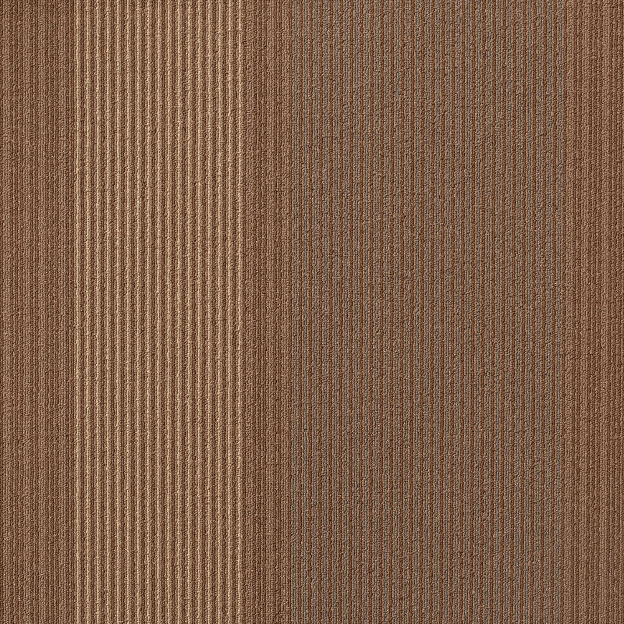 J J Invision Carpet Tile Carpet Vidalondon